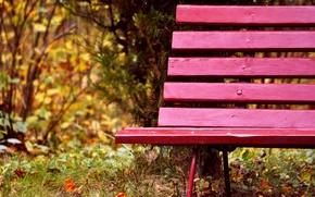 Картинка осень, трава, листья, деревья, скамейка, природа, парк, доски, лавочка, лавка, скамья