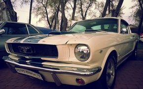 Картинка Mustang, Ford
