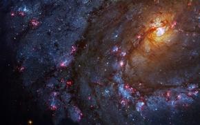 Картинка созвездие, спиральная галактика, M83, Гидра