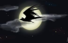 Картинка ночь, птица, луна, человек, звёзды, всадник, полёт, fantasy