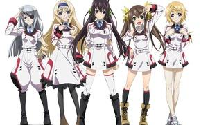 Картинка девушки, anime, art, Infinite Stratos, Houki Shinonono, Lingyin Huang, Charlotte Dunois, Cecilia Alcott, Laura Bodewig