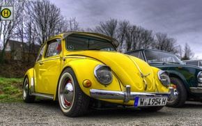 Картинка жук, volkswagen, hdr, vintage, yellow, beetle, car. vw