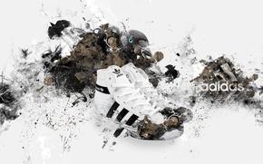 Картинка бренд, brand, птица, адидас, adidas, кроссовки
