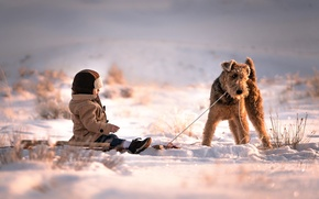 Обои собака, друзья, Sled Dog, снег, мальчик