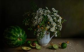Картинка ромашки, букет, арбуз, лайм, авокадо