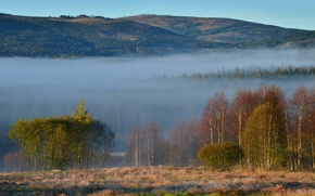 Картинка лес, горы, природа, туман, Чехия, Шумава, Plesná