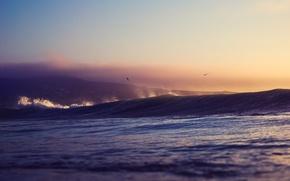 Картинка море, закат, брызги, птицы, волна, холм