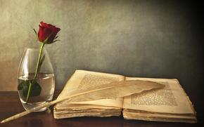 Картинка стол, перо, роза, книга, ваза, красная, старая