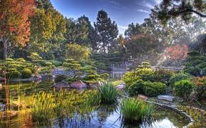 Картинка пруд, Япония, японский сад