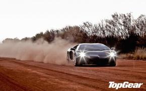 Картинка дорога, деревья, чёрный, пыль, Lamborghini, суперкар, top gear, передок, LP700-4, Aventador, ламборгини, высшая передача, топ …