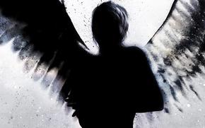 Картинка брызги, черный, крылья, силуэт