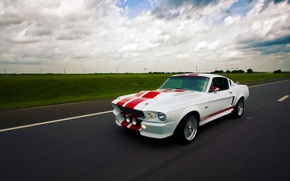 Обои Shelby, GT500E, Mustang, Ford