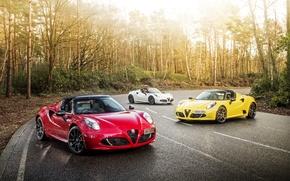 Обои Alfa Romeo, альфа ромео