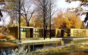 Обои осень, листья, вода, деревья, природа, листва, растения, желтые, речка