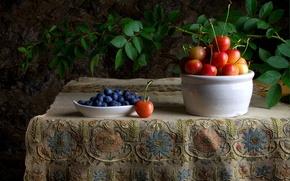 Обои ягоды, ветка, стол, натюрморт, скатерть, черешня, черника