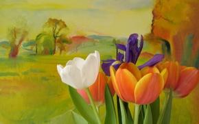Картинка стиль, тюльпаны, цветы, фон
