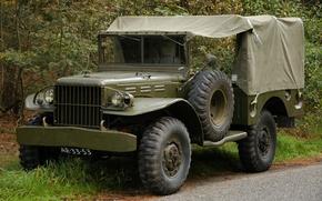 Картинка войны, автомобиль, армейский, повышенной, проходимости, мировой, Второй, времён, Dodge WC