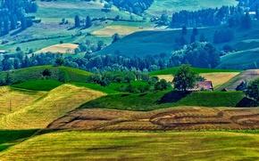 Картинка крыша, трава, деревья, дом, холмы, поля