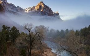 Картинка зима, лес, деревья, горы, туман, река