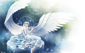 Картинка круги, крылья, ангел, лепестки, лежит, белые, косы, Angel, магические
