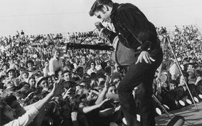 Обои музыка, обои, сцена, гитара, танец, микрофон, актёр, певец, зрители, фанаты, elvis presley, 1957, рок-н-ролл, поклонники, ...