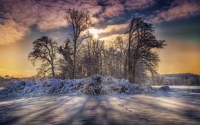Картинка зима, снег, деревья, облака.обработка