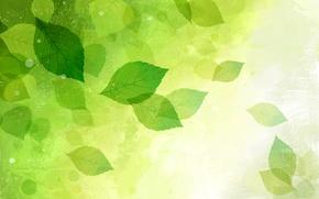Картинка листья, природа, вектор