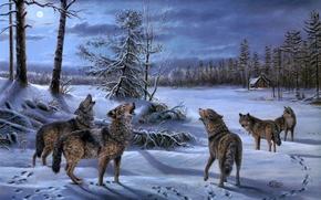 Картинка зима, лес, ночь, луна, волк, стая, волки, хижина, живопись, изба, Mary Pettis, Moonlight Chorus