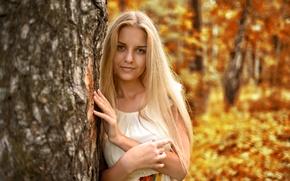 Картинка взгляд, golden, лицо, inspiration, листья, приятная, красивая, девушка, young, длинноволосая, Nastya, осень, платье, модель, портрет, ...