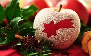 Обои макро, красное, Apple, звезда, яблоко, десерт, dessert, пудра