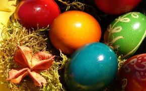 Картинка цвет, пасха, Яйца