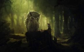 Картинка лес, деревья, темнота, сова, пень, мышь, разговор