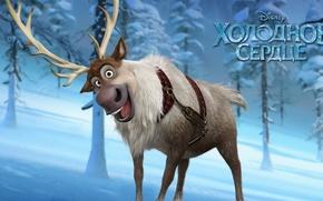 Картинка холод, зима, снег, улыбка, мультфильм, лёд, олень, Frozen, ёлка, дисней, свен, холодное сердце