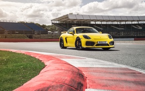 Обои желтый, Porsche, Cayman, порше, GT4, кайман