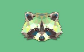 Обои абстракция, минимализм, енот, raccoon