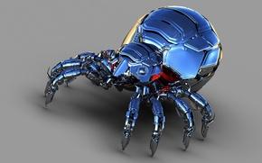 Картинка металл, фон, блеск, паук