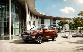 Обои Honda, хонда, 2015, CR-V, цр-в, CIS-spec