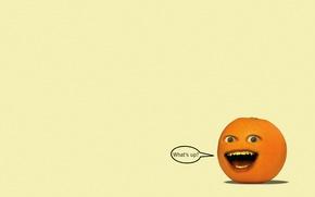 Обои взгляд, надпись, минимализм, Надоедливый апельсин, The Annoying Orange