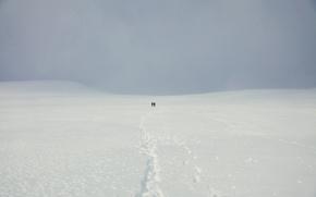 Картинка поле, снег, люди