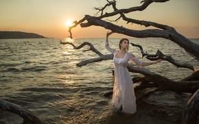 Картинка море, девушка, закат, ситуация, платье, коряга