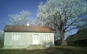 Картинка house, nature, wood, snow, goodlife