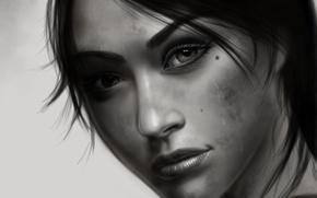 Картинка глаза, взгляд, девушка, лицо, фон, волосы, черно-белая, арт, Tomb Raider, lara croft