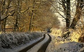 Обои утро, дорога, зима