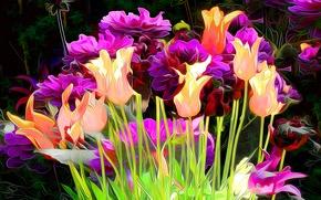 Картинка линии, цветы, абстракция, краски, тюльпаны