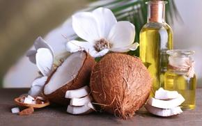 Картинка масло, кокос, экзотика, ароматерапия