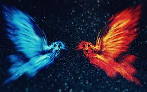 Картинка голубь, Абстракция, голубой фон