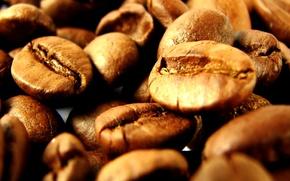 Картинка Кофе, кофейные зёрна, зерновые