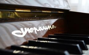 Картинка музыка, пианино, украина