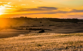 Картинка поле, свет, закат