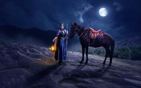 Картинка девушка, ночь, конь, луна, фонарь, Imaginarium
